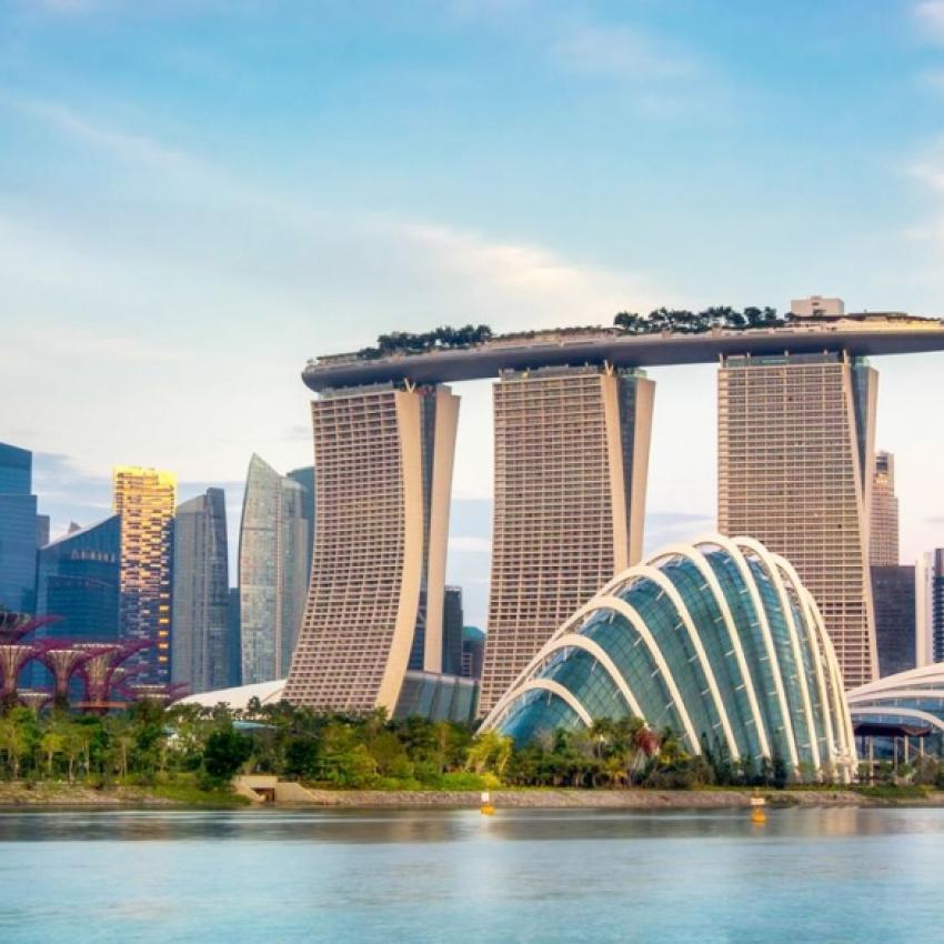 Singapore & Indonezia
